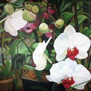 Art: Orchid -Oil Painting by Artist Harlan