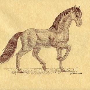 Art: Sable Stallion by Artist Jackie K. Hixon