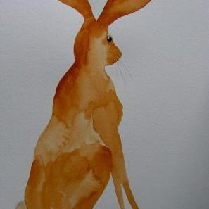 Art: HARE h481 by Artist Dawn Barker