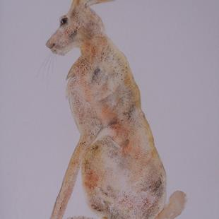 Art: HARE h482 by Artist Dawn Barker