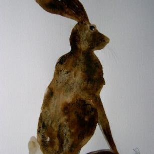 Art: HARE h488 by Artist Dawn Barker