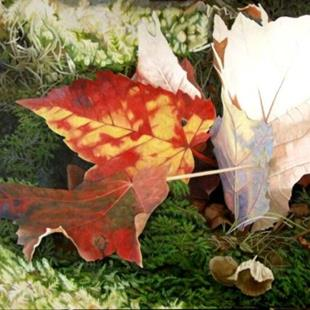 Art: Red Leaves and Moss - Oil Painting by Artist Harlan