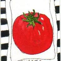 Art: TOMATO one ATC per day by Artist Nancy Denommee