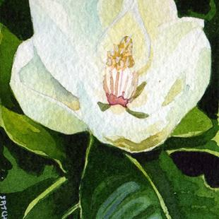 Art: Magnolia by Artist Mark Satchwill