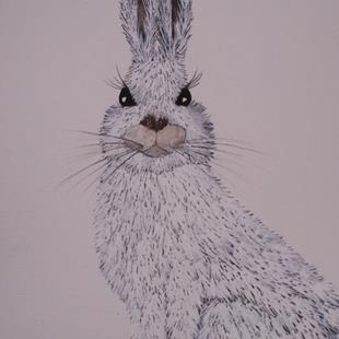 Art: ARCTIC HARE h555 by Artist Dawn Barker
