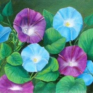 Art: Morning Glory FOTM by Artist Heather M. Mathieson