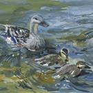 Art: Duck and Ducklings SOLD by Artist Karen Winters