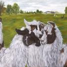 Art: Llama Gossip - the llamas of Cozy Cove Farm by Artist Tracey Allyn Greene