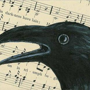 Art: Corvus Chorus by Artist Sara Field