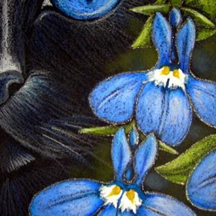 Art: BLACK CAT BEHIND THE LOBELIA FLOWERS - EBSQ SHOW by Artist Cyra R. Cancel