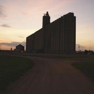 Art: The Road to the Grain Elevator by Artist Lisa Miller