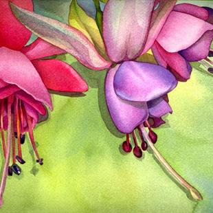 Art: Fuchsia from my Patio by Artist Lori Rase Hall