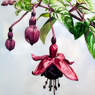 Art: Dad's Fuchsias by Artist Mark Satchwill