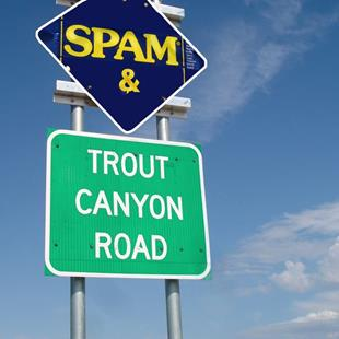 Art: Spam & Trout Canyon Road by Artist Muriel Areno