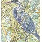 Art: Great Blue Heron by Artist Theodora Demetriades