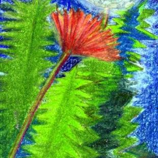 Art: Dandelion FOTM for August  by Artist Judith A Brody