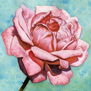 Art: Pink Rose by Artist Mark Satchwill