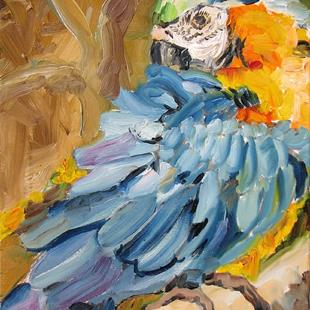 Art: Parrot washing by Artist Luda Angel