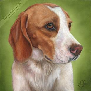 Art: Custom Dog Portrait : Gingie by Artist Leanne Wildermuth