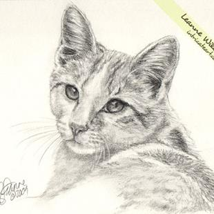 Art: Graphite Drawing : Bubba the Cat by Artist Leanne Wildermuth