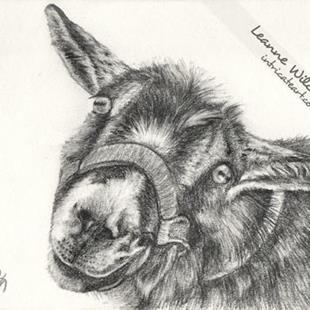 Art: Graphite Drawing : Pricilla by Artist Leanne Wildermuth