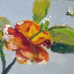 Art: Hibiscus Aceo-sold by Artist Delilah Smith