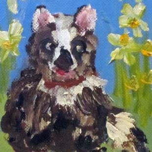 Art: Racoon Aceo by Artist Delilah Smith