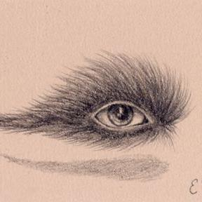 Art: The Not-So-Magnificent Eyebrow by Artist Vicky Knowles