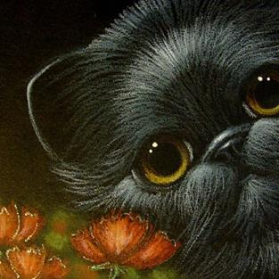Art: BLACK PERSIAN CAT & POPPY FLOWERS by Artist Cyra R. Cancel