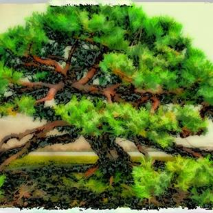 Art: Gentle Bonsai by Artist Carolyn Schiffhouer