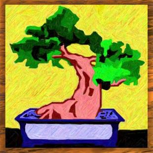 Art: Bonsai by Artist Shane Darren Ervin
