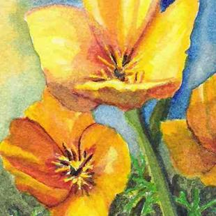 Art: California Poppies ACEO by Artist Melanie Pruitt