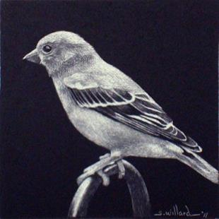 Art: Bird - Thumbnail by Artist Sandra Willard