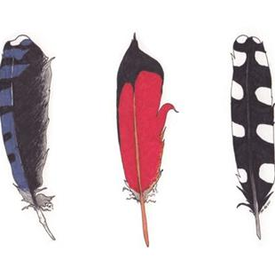 Art: Feathers by Artist Amanda Makepeace