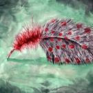 Art: Watercolor Feather by Artist Erika