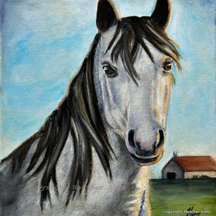 Art: Horse portrait by Artist Heather Sims