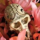 Art: Carved Native Monkey Skull by Artist Ruth Edward Anderson