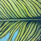 Art: banana leave I by Artist zeuxis ~ LA Hollins ~z