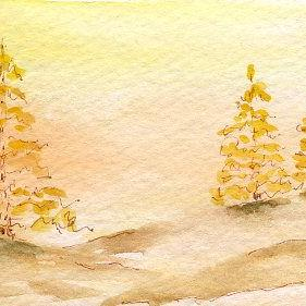 Art: Larch in Autumn watercolor by Artist Hannah Clements