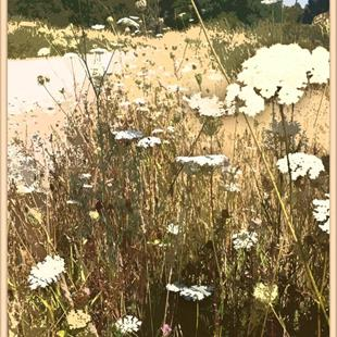 Art: Prairie Lace by Artist Patricia  Lee Christensen