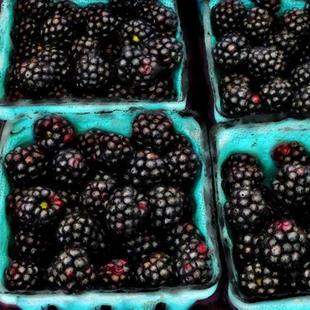 Art: Blackberries--Yum! by Artist Deanne Flouton