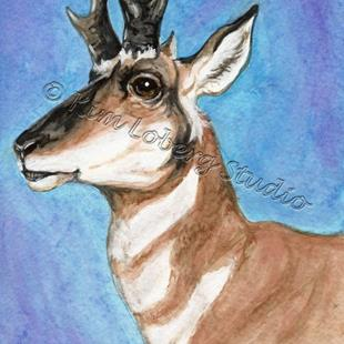 Art: Majestic Pronghorn - SOLD by Artist Kim Loberg
