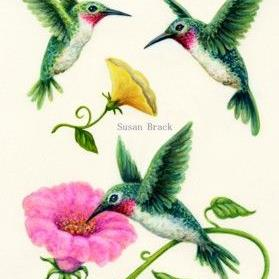 Art: HUMMINGBIRDS YELLOW PINK Flipped Right by Artist Susan Brack