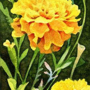 Art: Happy Marigolds ACEO by Artist Carmen Medlin
