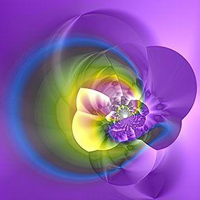 Art: Pansy Hybrid: Fractal by Artist Alma Lee