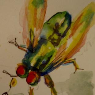 Art: Fly Aceo-sold by Artist Delilah Smith