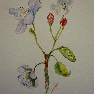 Art: Crabapple Flowers by Artist Delilah Smith