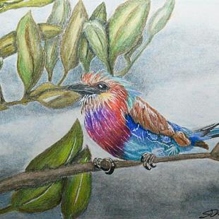 Art: Lilac Roller Bird by Artist Shari Lynn Schmidt