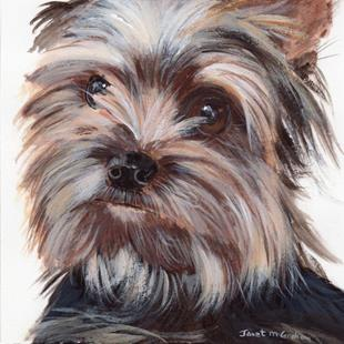 Art: Yorkie by Artist Janet M Graham