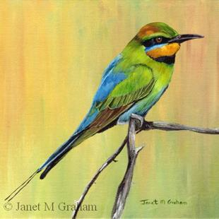 Art: Rainbow Bee eater by Artist Janet M Graham
